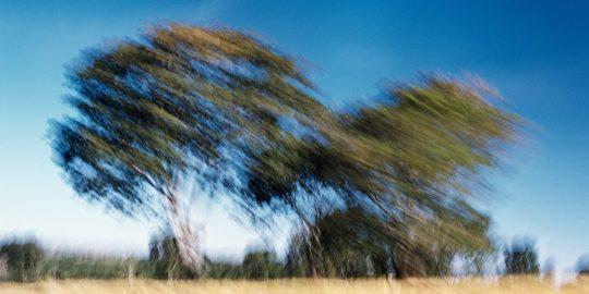 Aqui você encontra as ferramentas para realizar trabalhos que misturam fotografia e imagens em movimento.