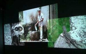 A próxima Sexta Livre convidou a artista Valéria Costa Pinto para apresentar seis vídeos de arte mais representativos de sua carreira ©Valéria Costa Pinto