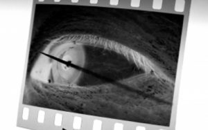 O Ateliê apresenta nesta Sexta Livre um bate-papo com Miguel Chikaoka, um dos grandes mestres da fotografia brasileira © Miguel Chikaoka, Hagakure