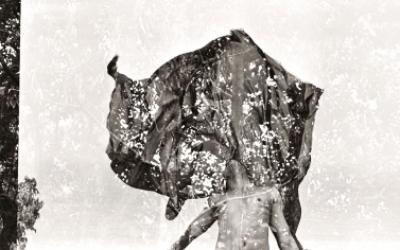 O próximo evento Sexta Livre do Ateliê da Imagem terá a projeção fotográfica A Olho Nuve o lançamento do livro Elo, de Calé @Viviane Giaquinta